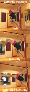 The butterfly.