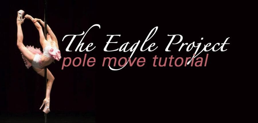 The Eagle Project: Part 2